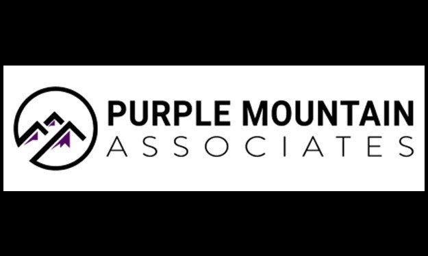 Purple Mountain Associates thumbnail